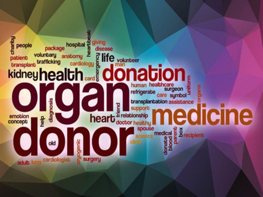 I Heart Oswego Op Ed Organ Donation Registration Improves But