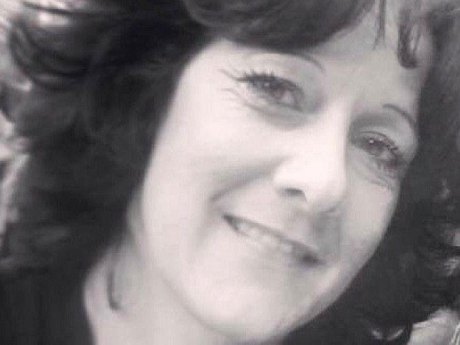 I Heart Oswego Linda Demassi Announces Candidacy For